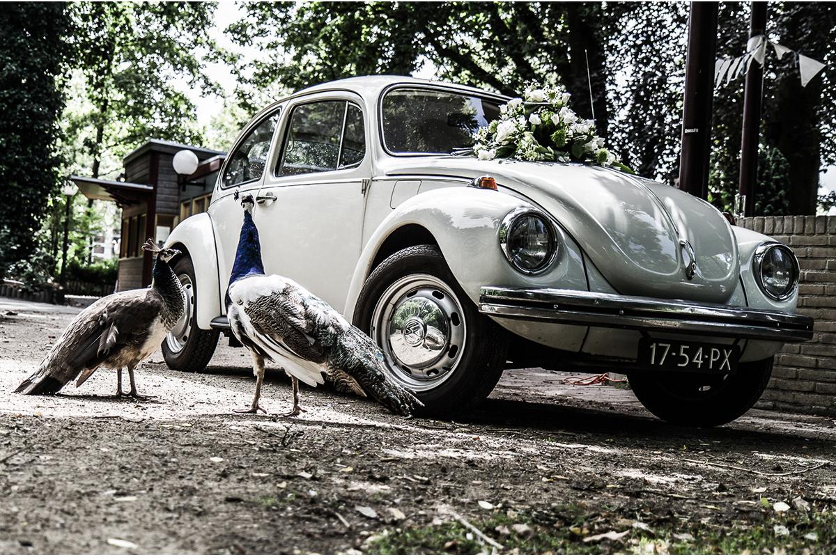 trouwfotograaf-deventer-overijssel-gelderland
